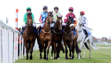 Runners and riders at the start of The BoyleSports Champion Chase at Punchestown 2016