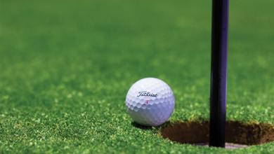 Golf ball and pin. File photo