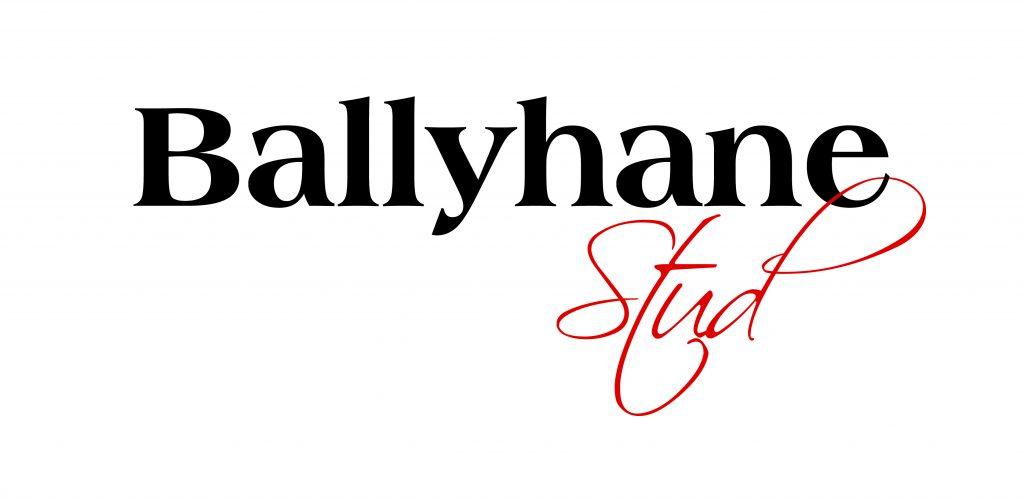 Leighlinbridge based Ballyhane Stud to sponsor big race at