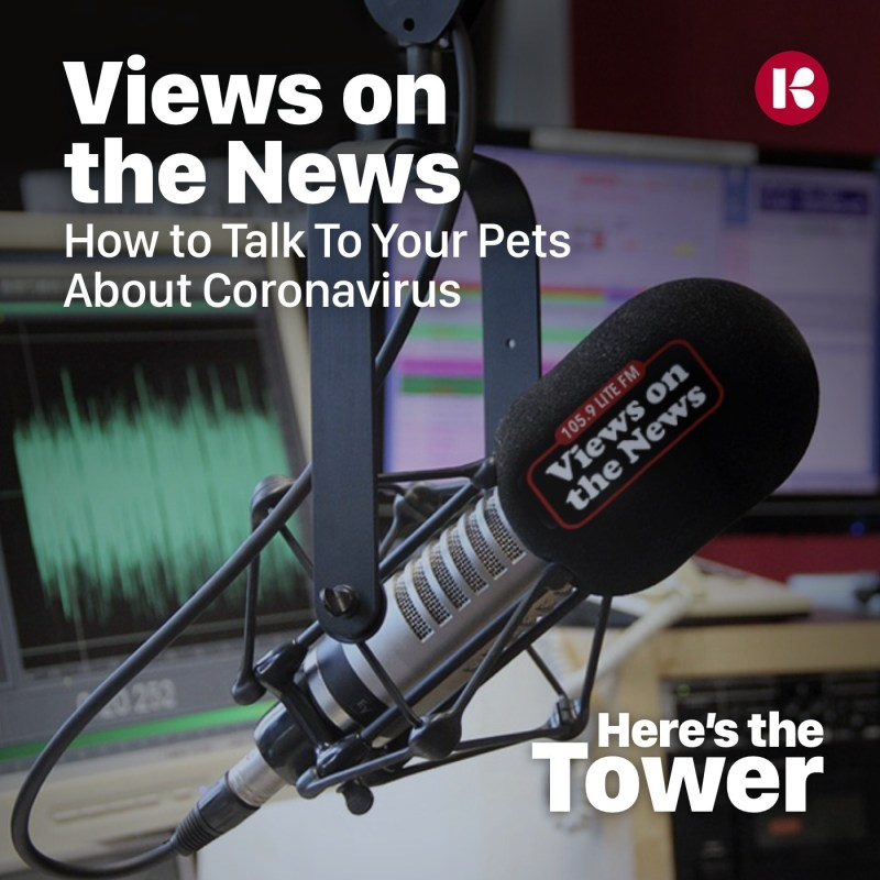 Views on the News: How to Talk To Your Pets About Coronavirus