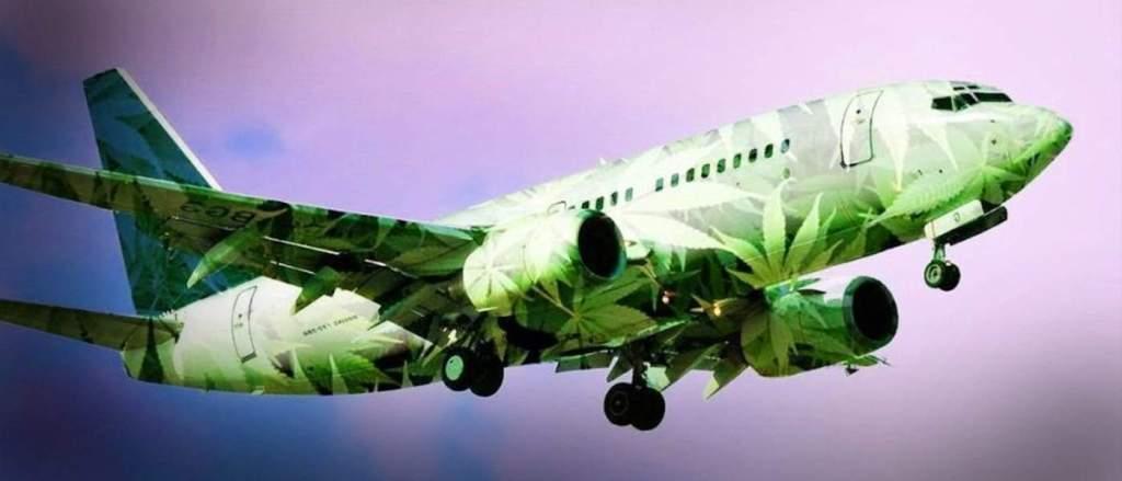 cannabis products allowed by tsa