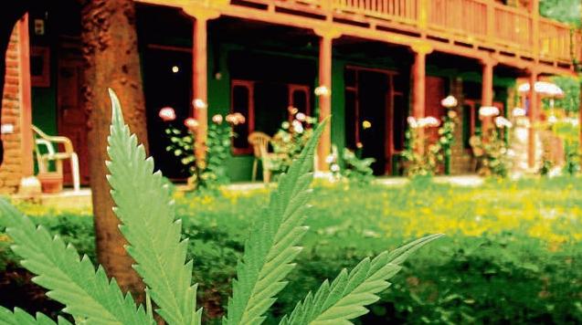missouri medical marijuana in hotels
