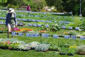 Annual Spring Plant Sale @ Red Butte Garden Amphitheatre |  |  |