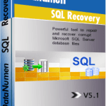 DataNumen SQL Recovery Crack