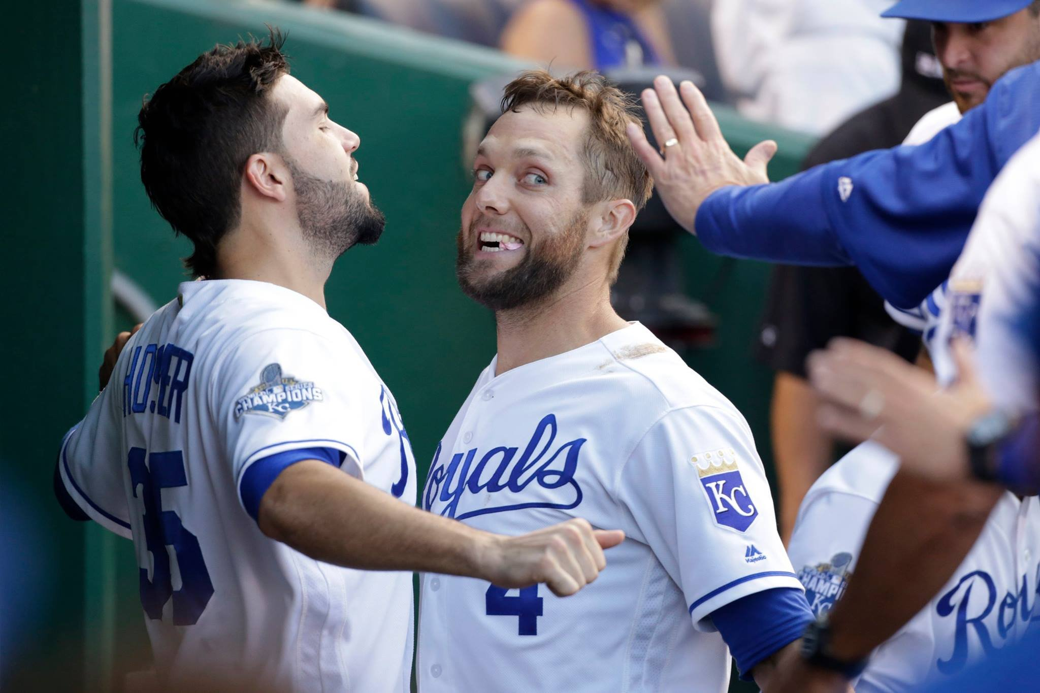 Image result for fun alex gordon
