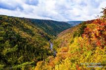 Blackwater Canyon in Fall
