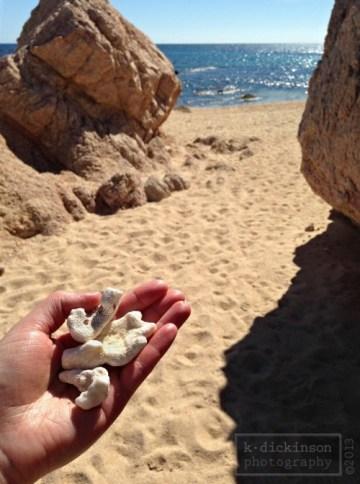 Playa Chileno