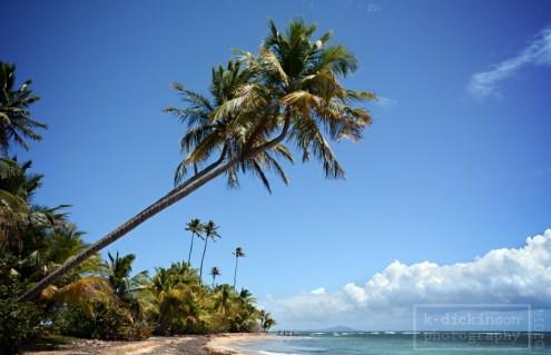 The beach at Palmas del Mar.