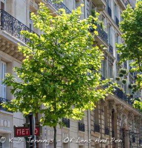 Paris Street Scene With Metro Sign