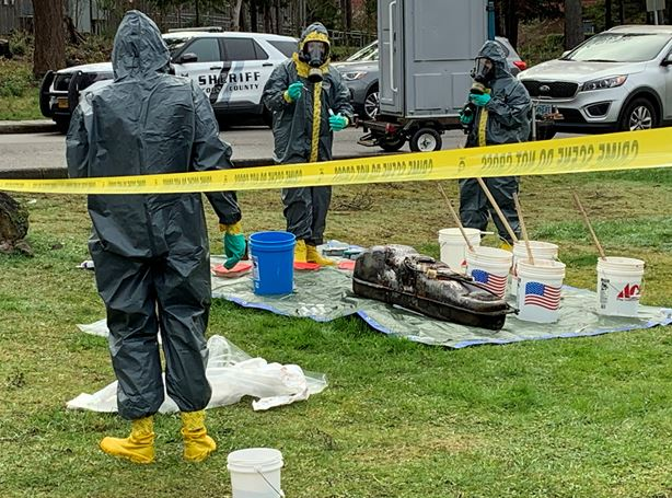 Suspected DMT Lab Located in Coos Bay
