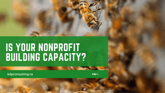Is Your Nonprofit Building Capacity? | kdp nonprofit consulting