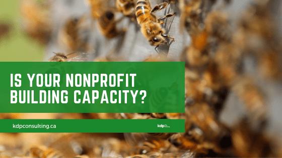 Nonprofit Building Capacity? | kdp nonprofit consulting