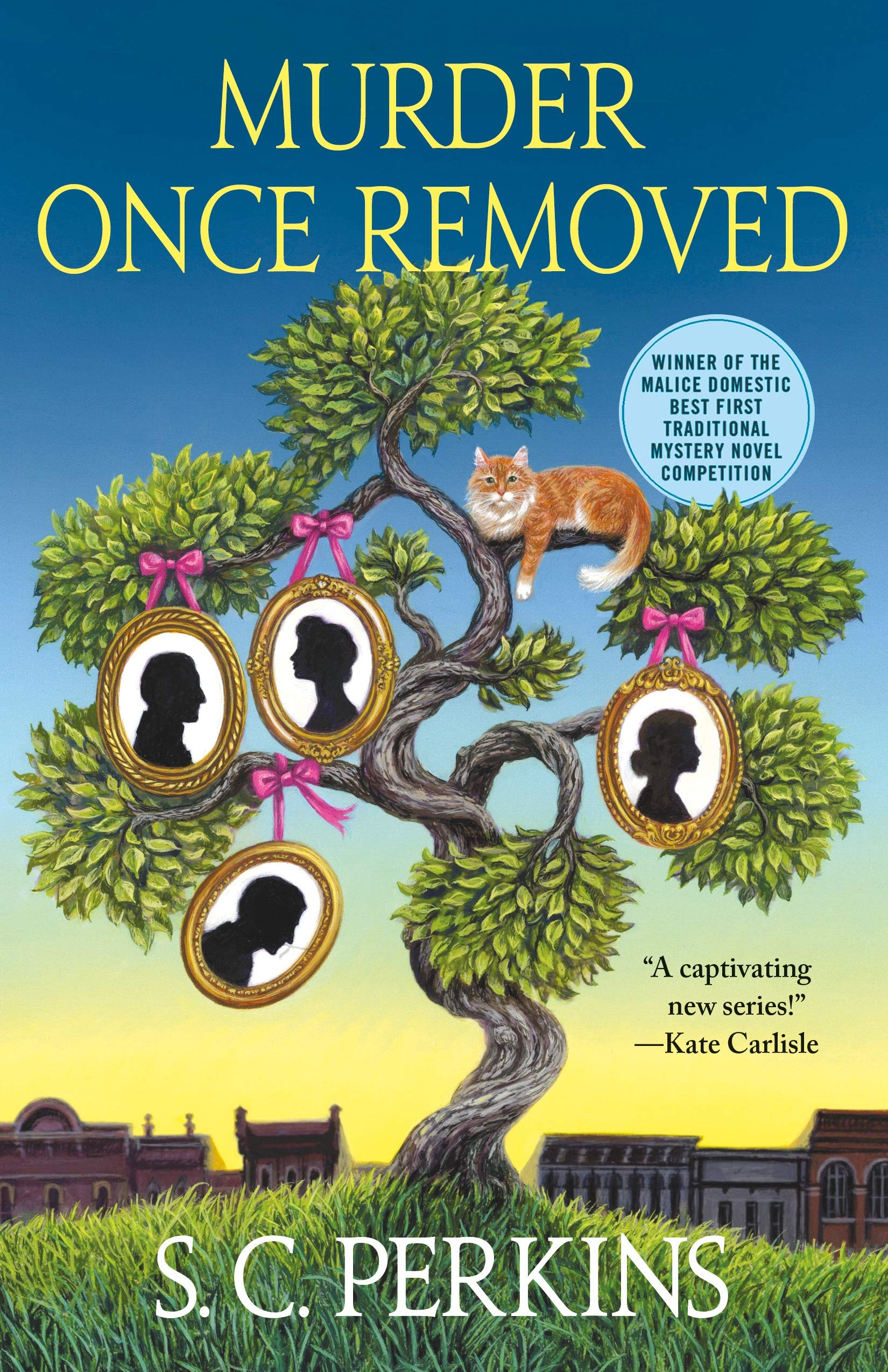 Murder Once Removed by S.C. Perkins
