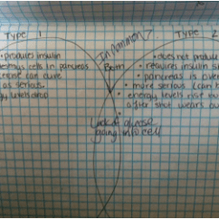 Venn Diagram Type 1 And 2 Diabetes Contactors Wiring Pbs Classroom Activities Pltw Biomedical Sciences Portfolio Here Is My Original Of Vs Since I Did Not Compete It A More Detailed Compare Contrast Below