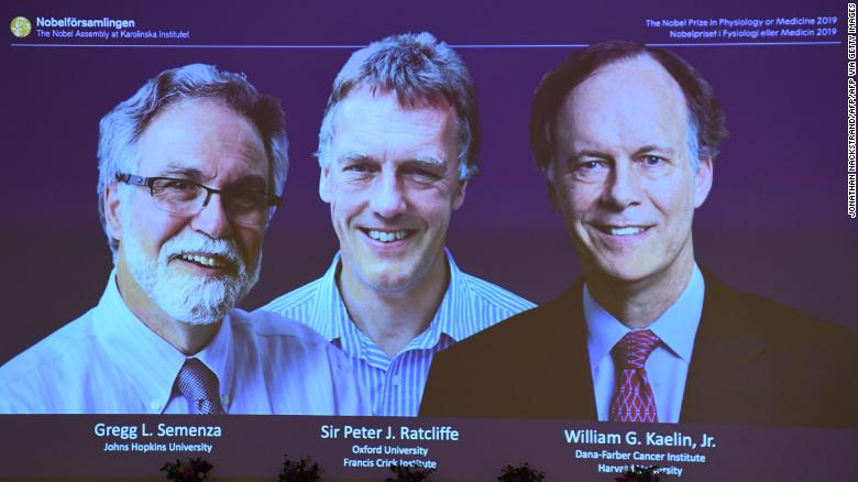 Images of the winners of the 2019 Nobel Prize in Medicine or Physiology