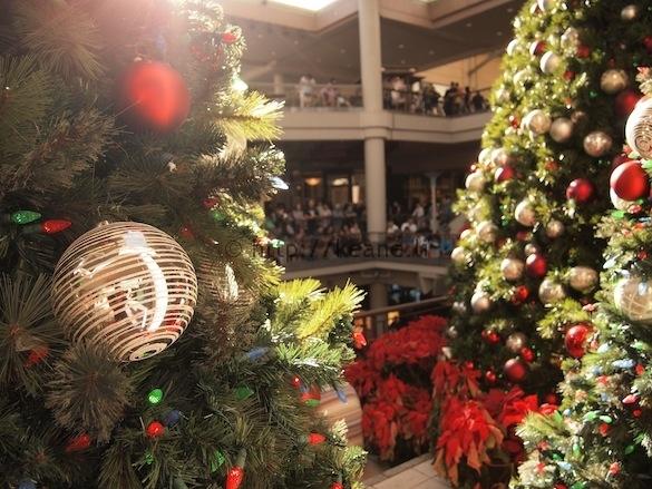 Christmas Trees at Ala Moana Center