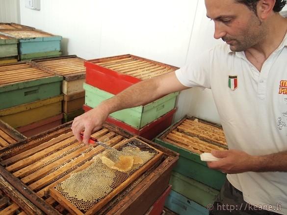 Bee farming and honey at Miele Praconi in San Mauro Pascoli