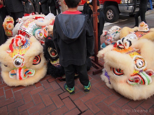 Boy and Chinese lion heads before Chinese New Year parade in San Francisco