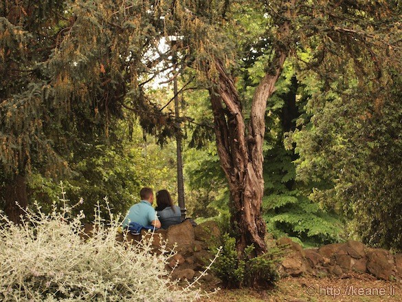 Rome - Couple nestled in trees in a park