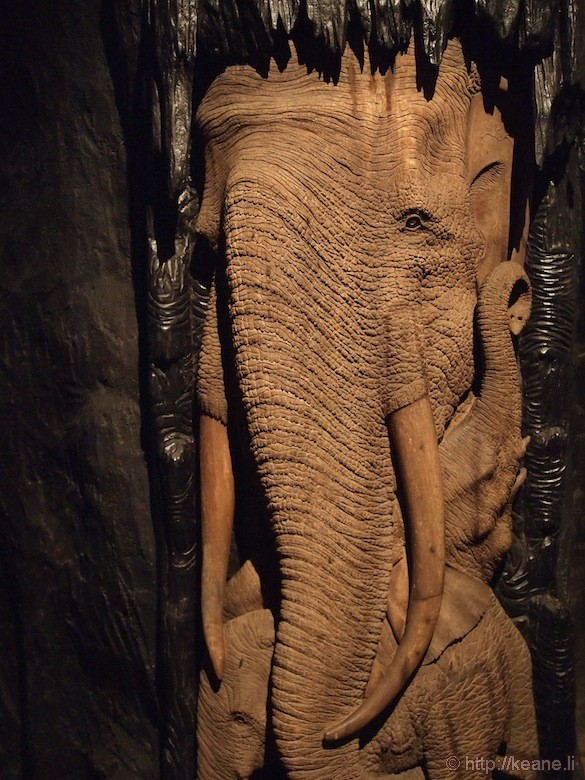 Singapore's Night Safari - Elephant