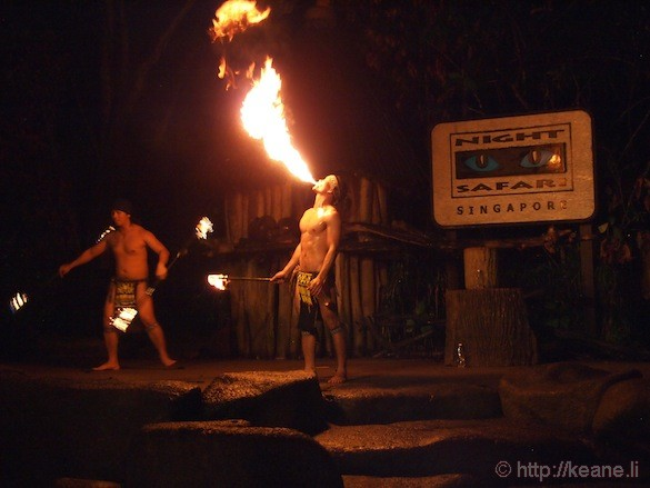 Singapore's Night Safari - Fire Dancers