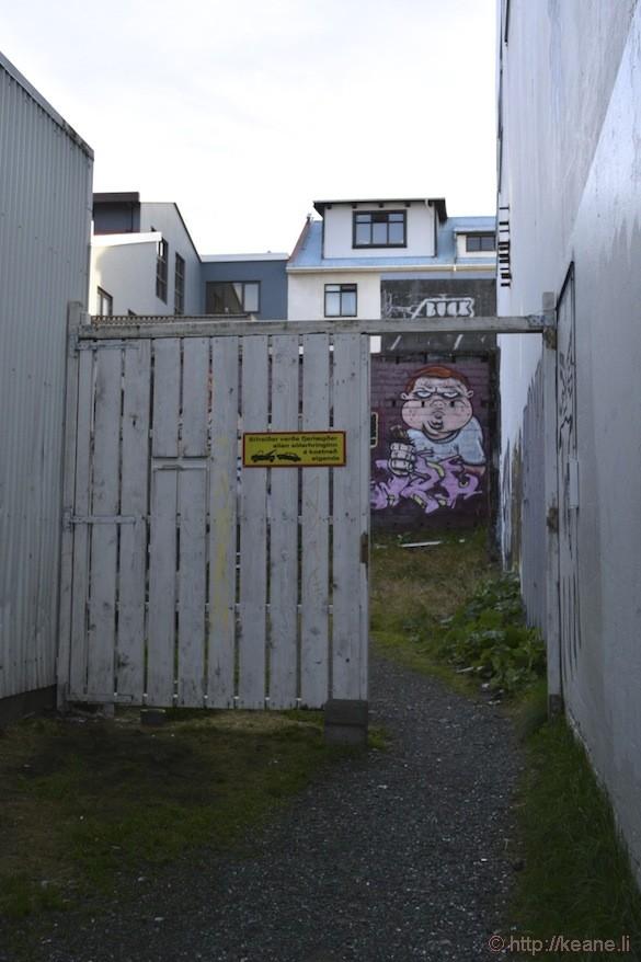 Reykjavík, Iceland - Street Art on Laugavegur