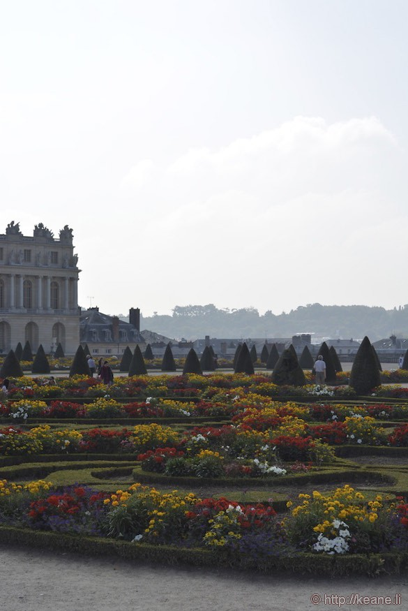 Versailles Gardens - Flowers