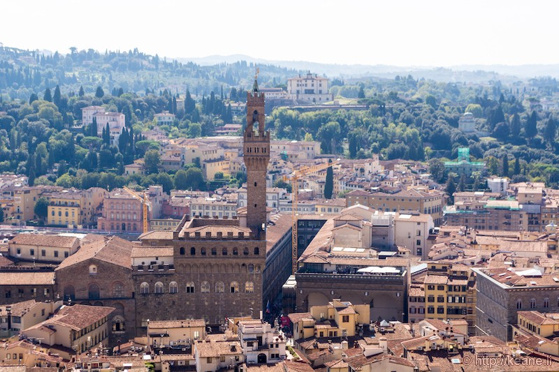 View from the Top of Florence