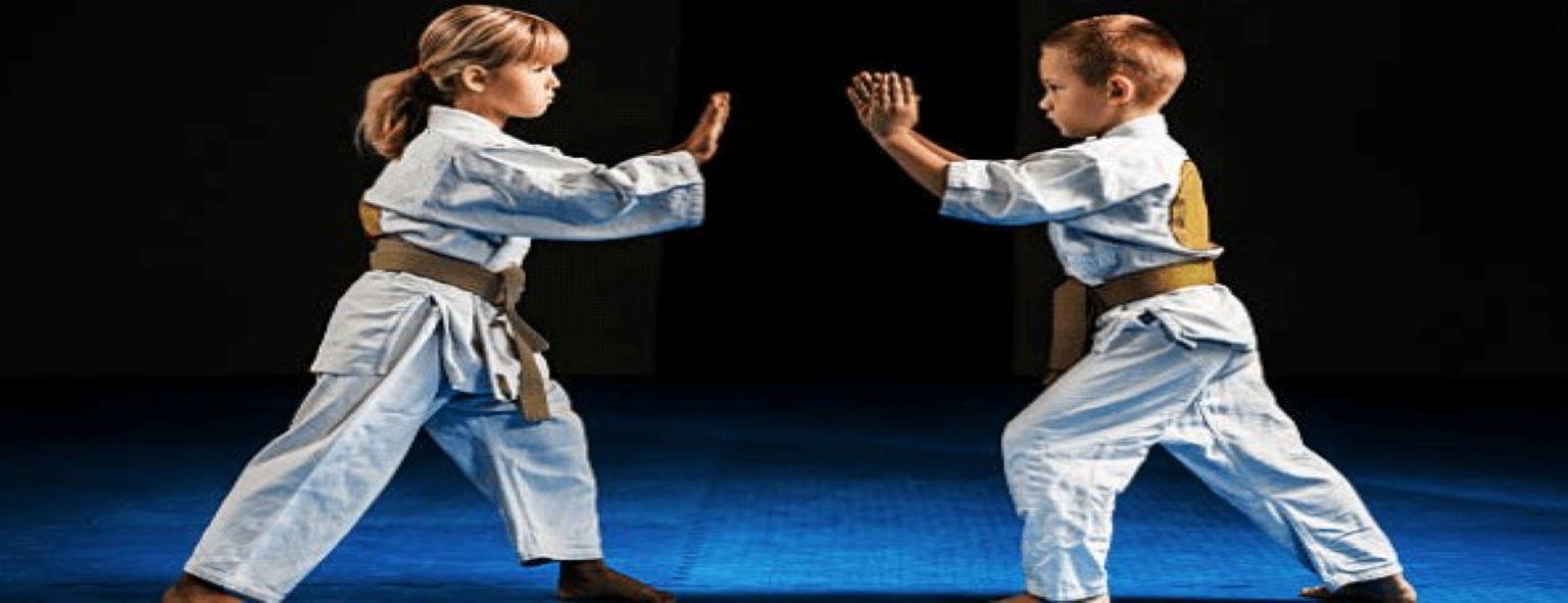 extraescolar artes marciales