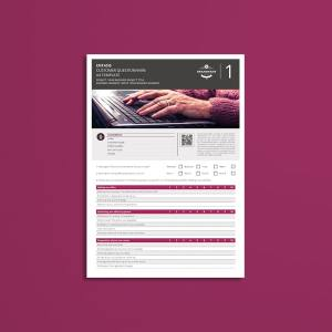 Entasis Customer Questionnaire A4 Template