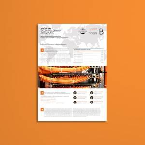 Omicron Executive Summary A4 Template
