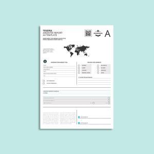 Tessera Absentee Report A4 Template