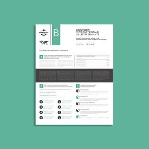 Varutikon Executive Summary US Letter Template