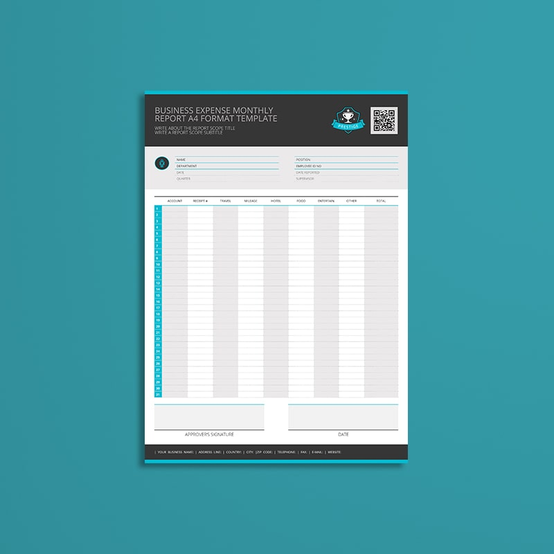 Business Expense Monthly Report A4 Format Template