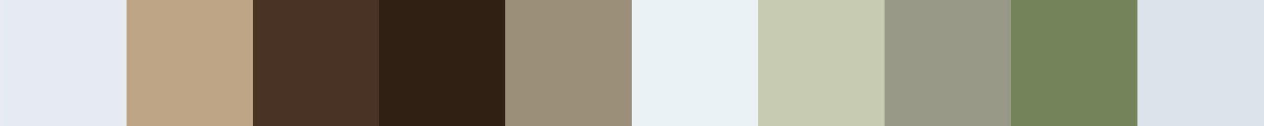 618 Prapelia Color Palette