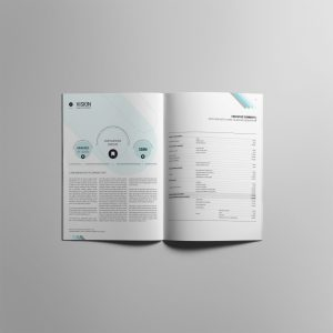 ViSION Business Plan Template