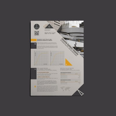 OLiCO Executive Summary Template