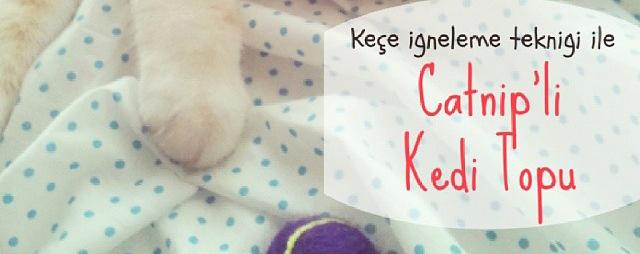 Keçe İğneleme Tekniği ile Catnip'li Kedi Topu (Anlatımlı)