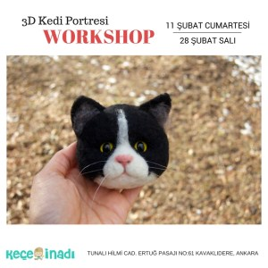 3D Kedi Portresi Workshop