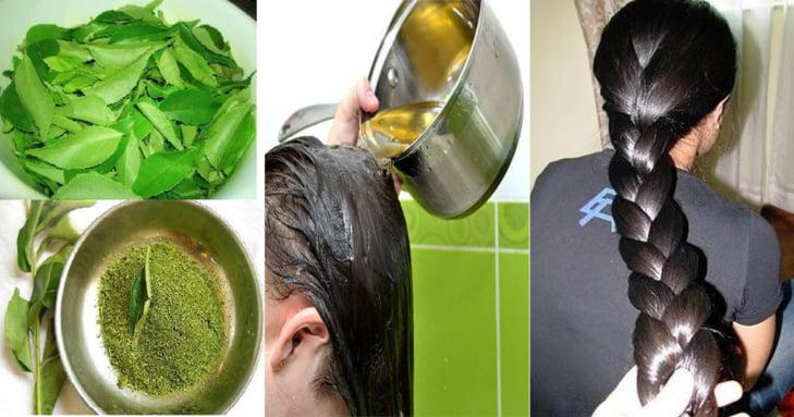 هذه أفضل الزيوت الطبيعية لتطويل الشعر في وقت قصير جدا