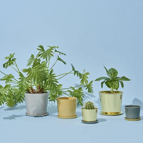 HAY Botanical Pot M Warm yellow