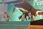 初めての沖縄旅行1日目~Penguin Bar Fairy(ペンギンバー フェアリー)~