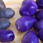 Lila üzlet! A zöldség, ami tízszer több profitot termel, mint amennyi befektetést igényel!