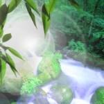 【アクアテラリウム】迫力のある川の製作!?製作の方法やコツを紹介♪