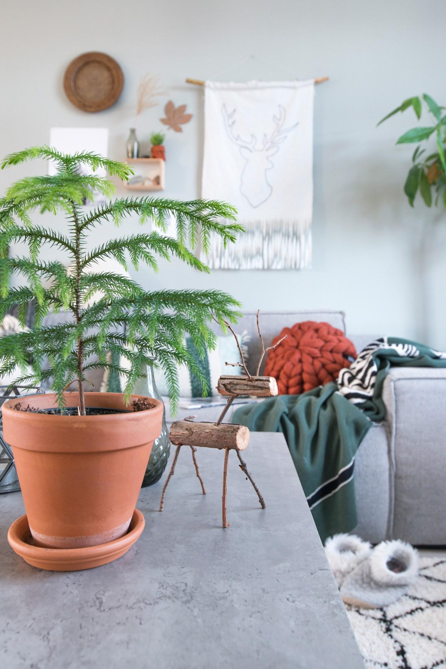kamerden diy wandkleed hert reindeer betonlook groen planten terracotta woonkamer