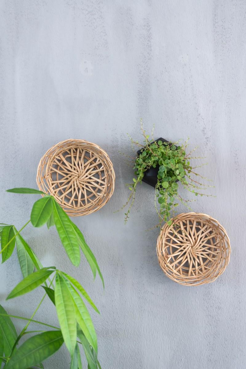 Trend: Planten verticaal aan je muur!