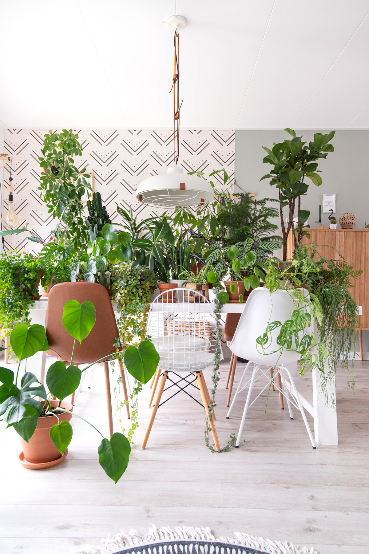 interieur keeelly91 urbanjungle jungalow houseplant crazyplantlady groenevingers diningroom eetkamer wallpaperdecor