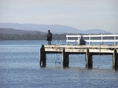 Fishing off Swansea Peir