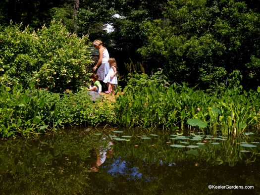 Two children are led along a simple path around a garden pond. Water plants frame the edge of the pond and draw the eye to the background where the children are engrossed in a myriad of plant life and garden inhabitants.