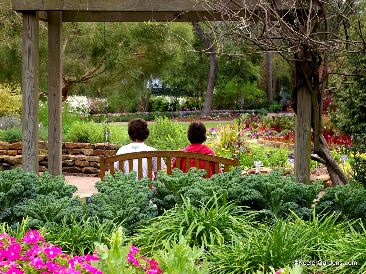 A lush garden in Texas with petunias, daylilies, and kale in the foreground with a pergola framing a mother and teenage son on a bench swing hung from the structure. The path in front of them is walled with mixed annual display beds accenting perennial lavender, catmint, and boxwood, as they wind to the right holding red feather celosia as a feature with a lush grassy lawn opening up to evergreens in a woodland garden in the distance.
